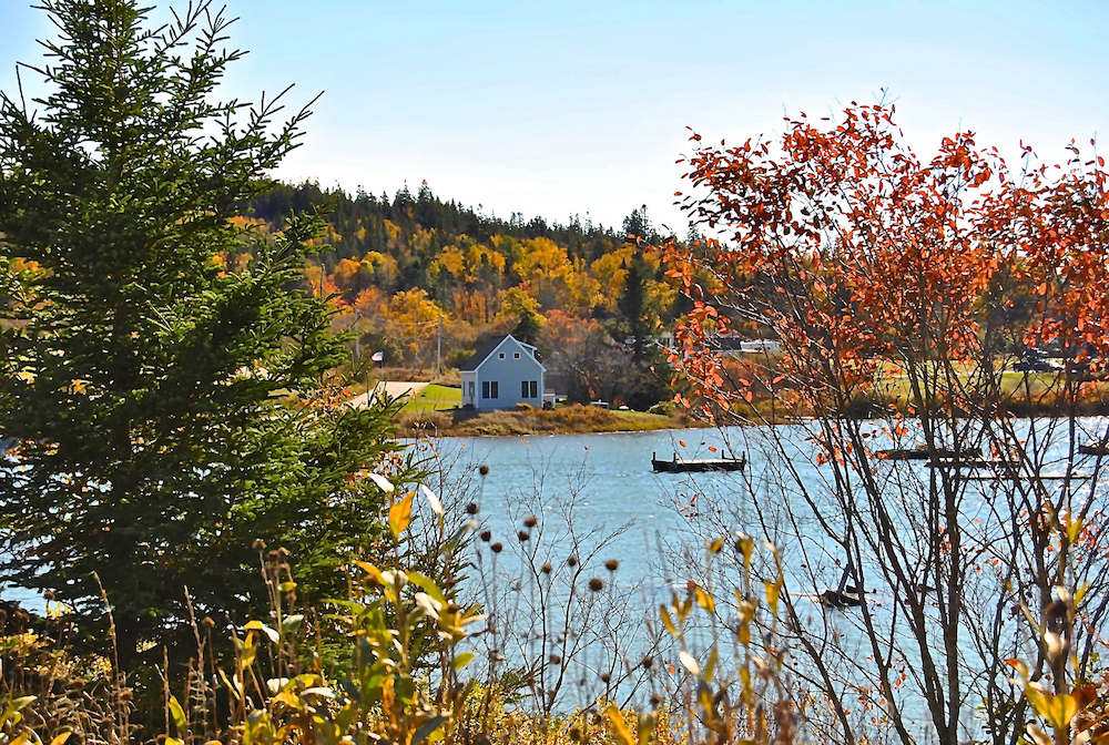 The Frisky Fish Cottage in Autumn