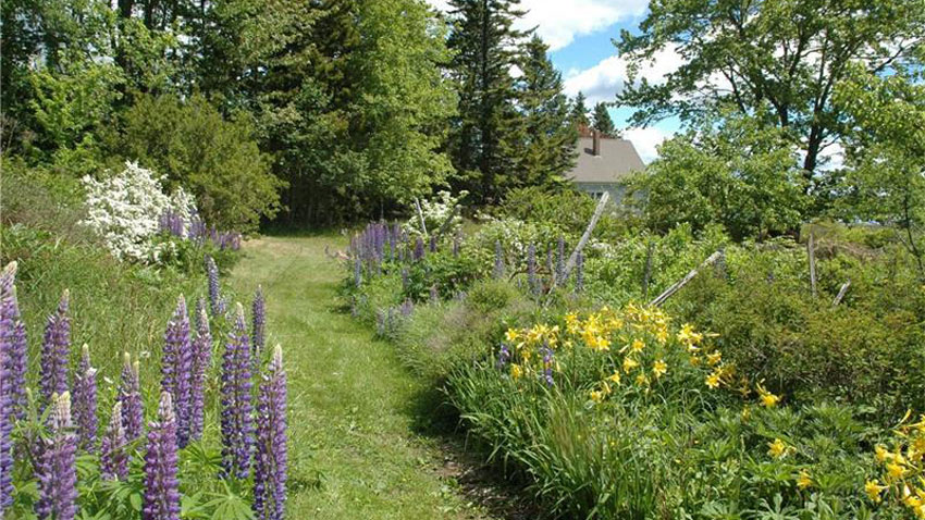 Cranberry Harbor farmhouse garden