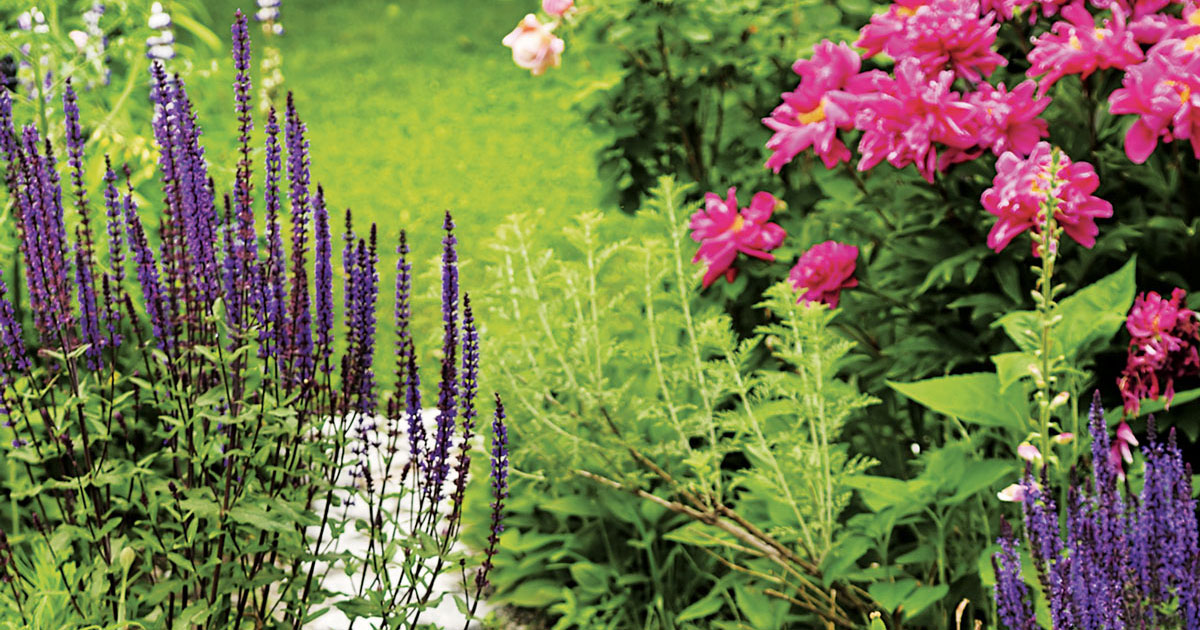 Gardening In Maine - Expert Advice | Maine Homes by Down East