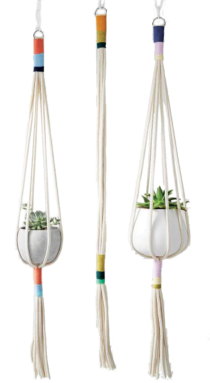 colorful plant hangers