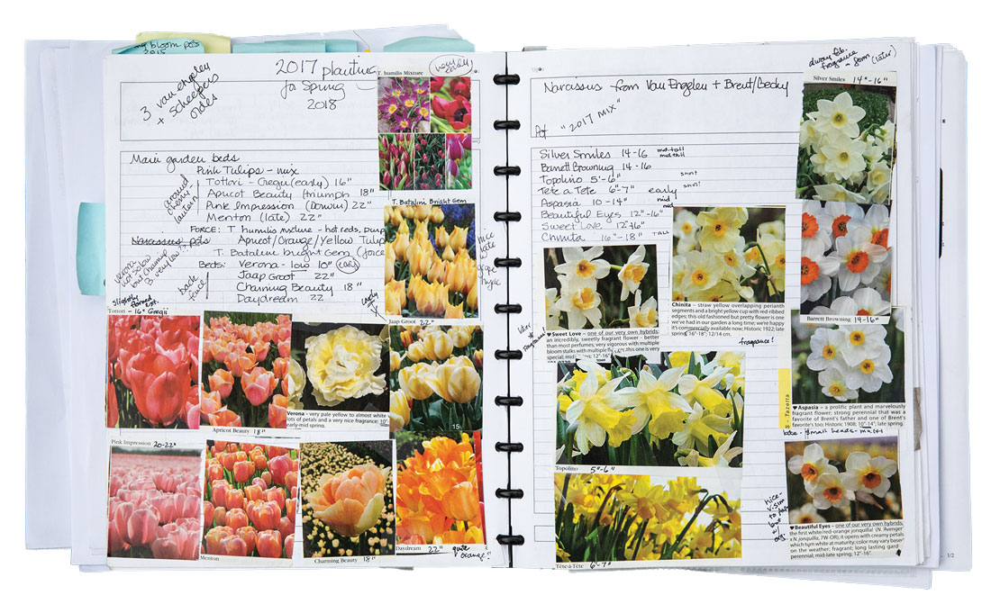 Robin Whitten's voluminous garden notebook