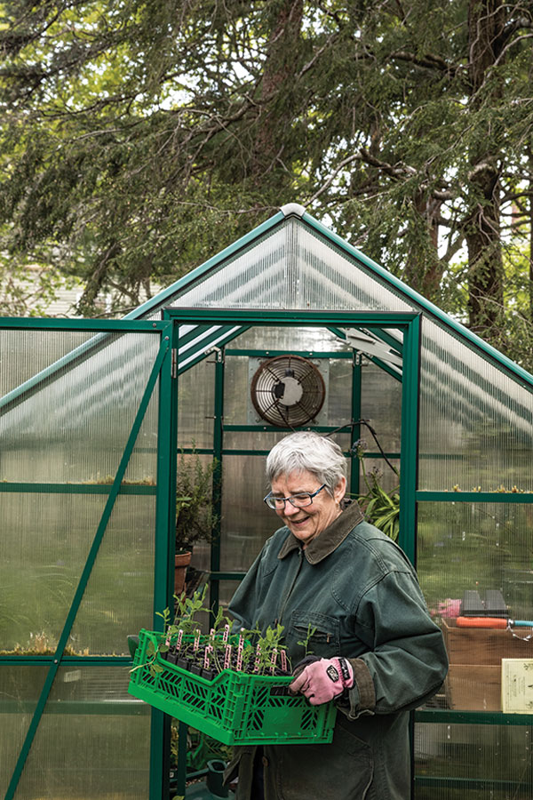 Robin Whitten working in the greenhouse