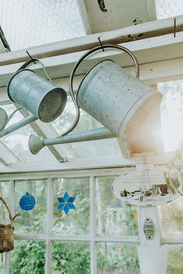 watering cans in the greenhouse