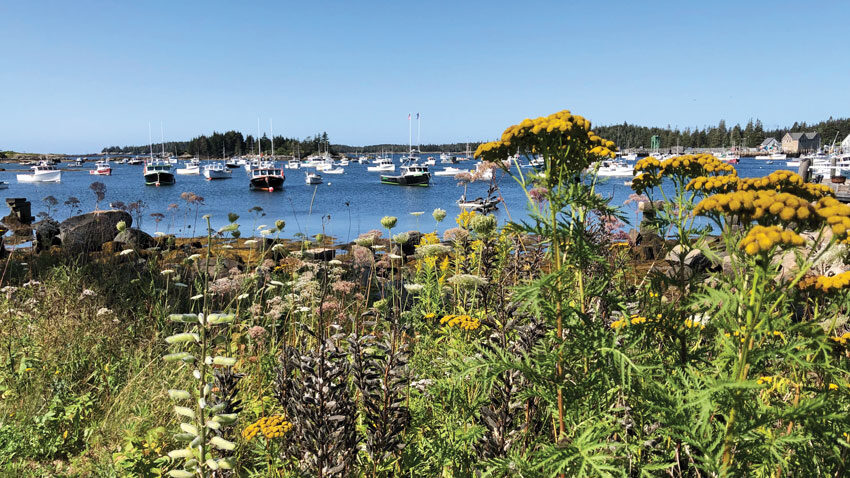 Carvers Harbor, Vinalhaven, Maine