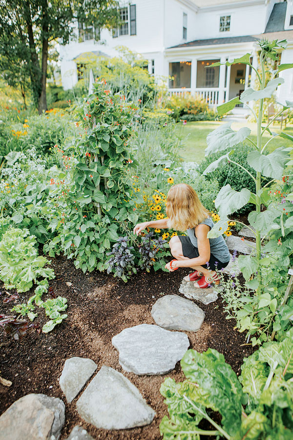 Stepping stones offer a convenient path to herbs and leafy green vegetables interplanted with perennials and annuals.