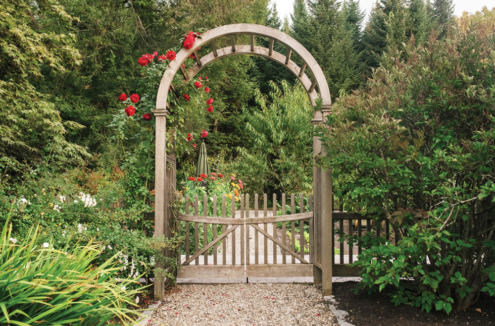 an arbor draped with Ramblin' Red roses leads to a vegetable garden cultivated in a filled-in swimming pool