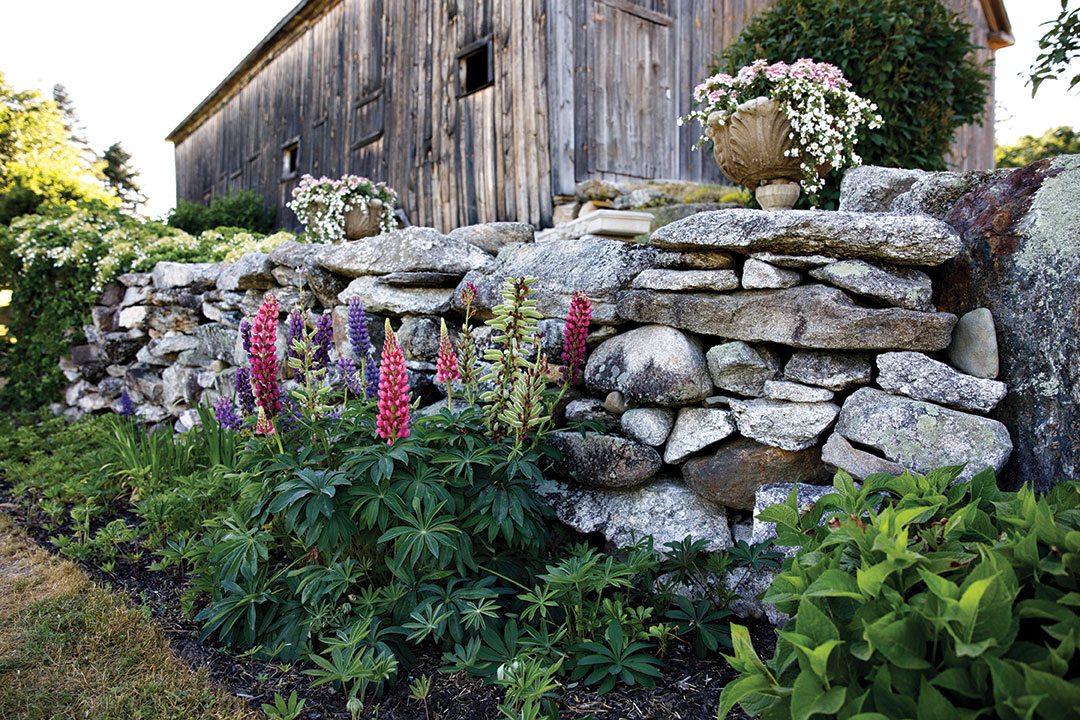 Xuan Xanh Laurie has planted a number of small garden areas around a property that includes an 18th-century home with an attached barn.