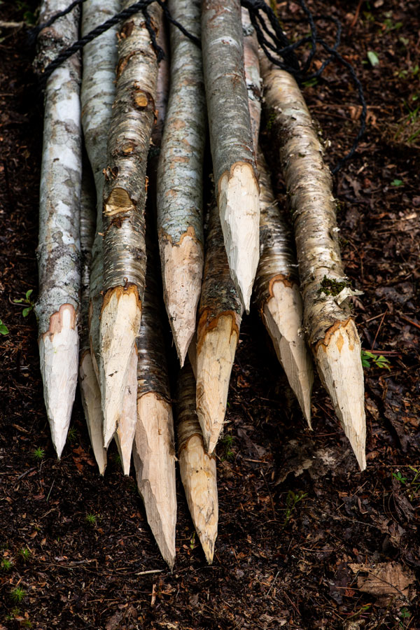 stakes for the wattle fence