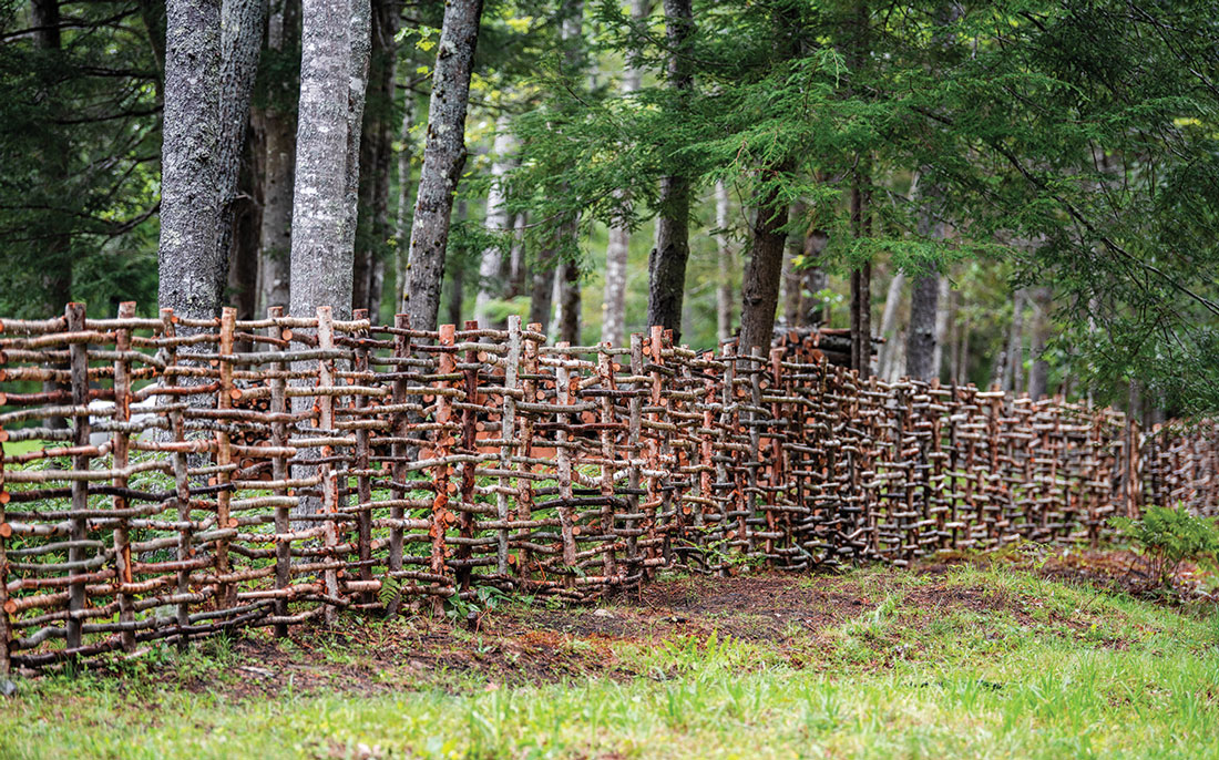 wattle fencing, an ancient technique that involves interlacing native shoots, saplings, and branches